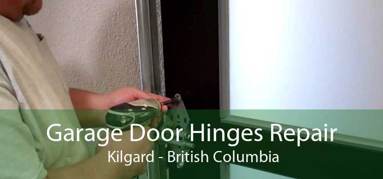 Garage Door Hinges Repair  Kilgard - British Columbia