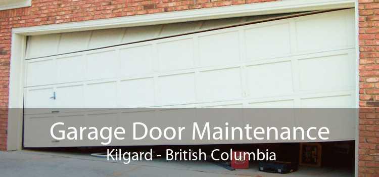 Garage Door Maintenance  Kilgard - British Columbia