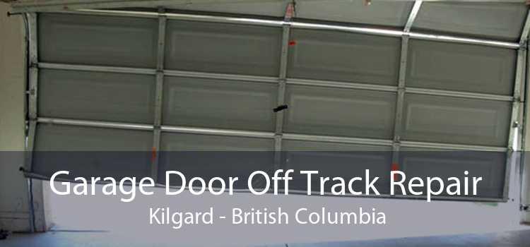 Garage Door Off Track Repair  Kilgard - British Columbia
