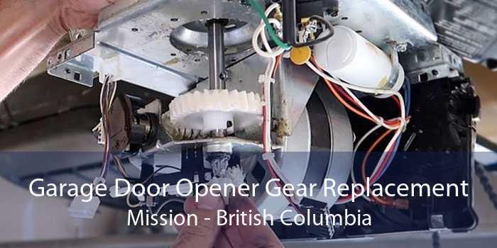 Garage Door Opener Gear Replacement Mission - British Columbia