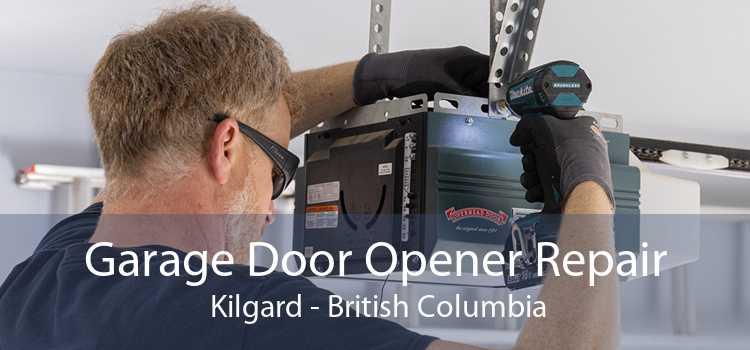Garage Door Opener Repair  Kilgard - British Columbia