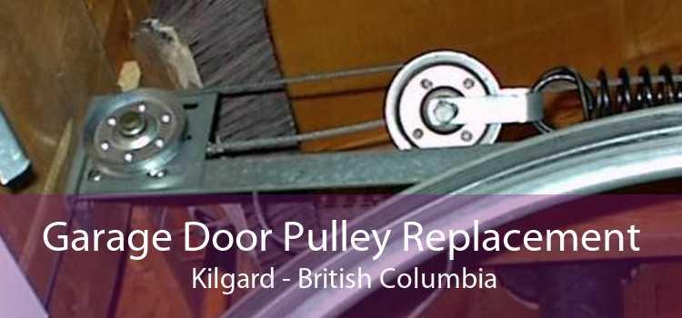 Garage Door Pulley Replacement  Kilgard - British Columbia