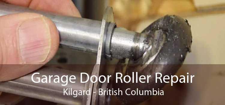 Garage Door Roller Repair  Kilgard - British Columbia