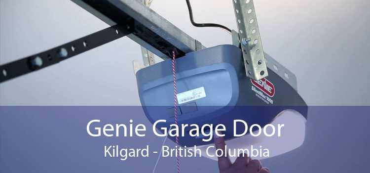 Genie Garage Door  Kilgard - British Columbia