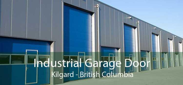 Industrial Garage Door  Kilgard - British Columbia