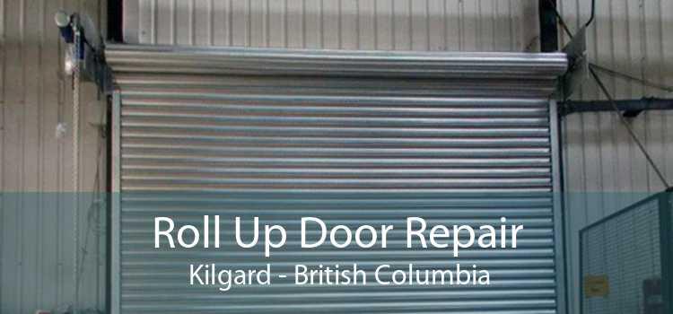 Roll Up Door Repair  Kilgard - British Columbia